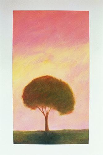 111-trees-085