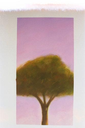 111-trees-089