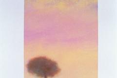 111-trees-041