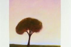111-trees-074