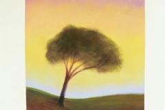 111-trees-075