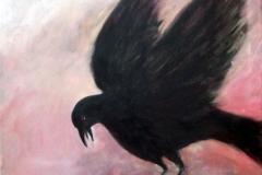 crow-study-35