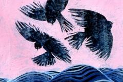 ocean-birds