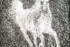 white-horse-02