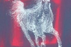 white-horse-06