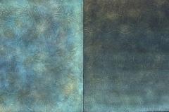 ocean-algea